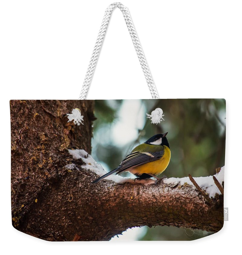Great Tit Weekender Tote Bag featuring the photograph Male Great Tit by Eti Reid