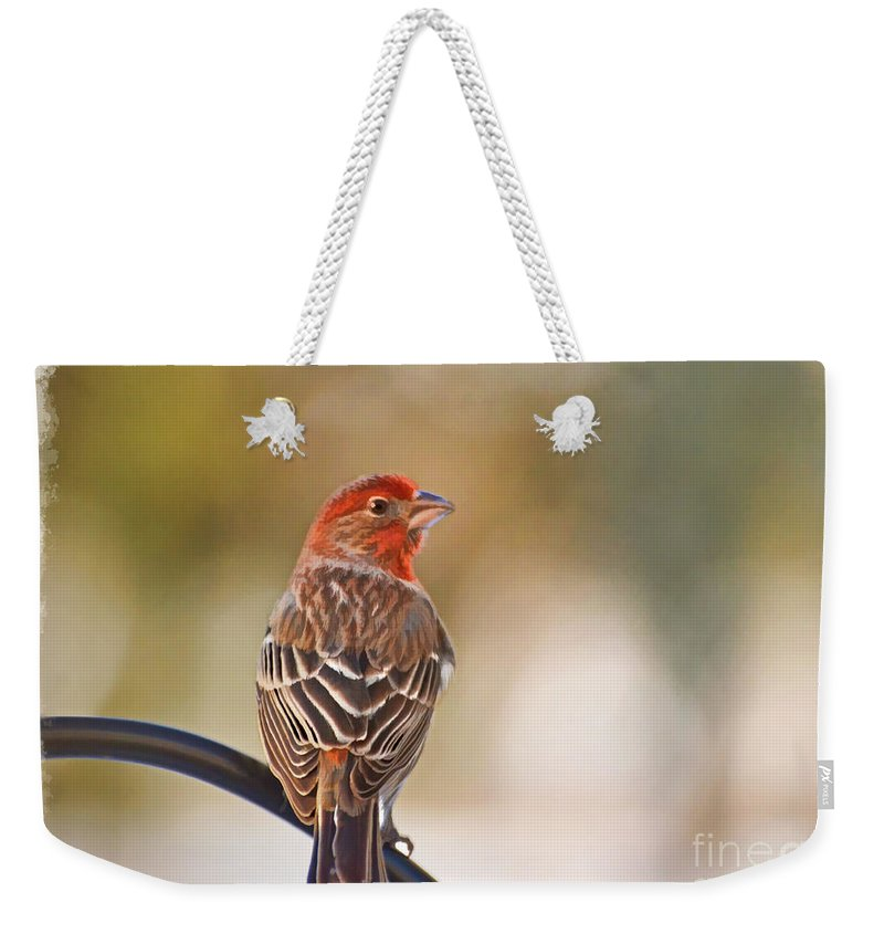Wildlife Weekender Tote Bag featuring the photograph Male House Finch - Digital Paint And Frame by Debbie Portwood