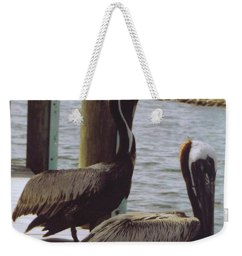Matlacha Weekender Tote Bag featuring the photograph Male Pelicans by Robert Floyd