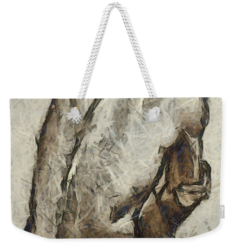 Male Weekender Tote Bag featuring the painting Male Torzo by Dragica Micki Fortuna