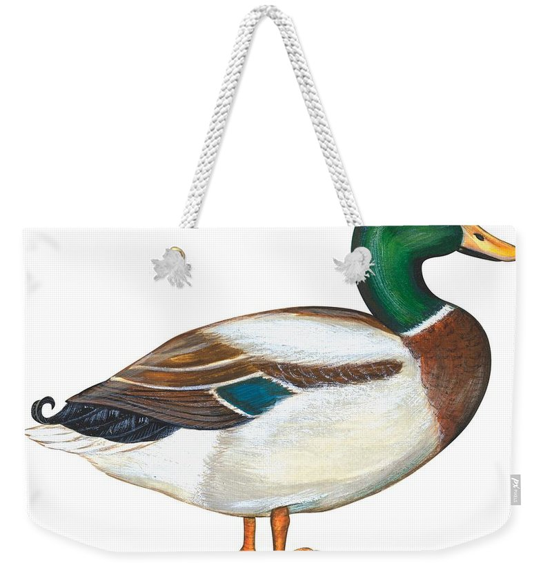 No People; Horizontal; Side View; Full Length; White Background; One Animal; Wildlife; Close Up; Zoology; Illustration And Painting; Bird; Beak; Feather; Web; Animal Pattern; Colorful; Mallard Duck; Anas Platyrhynchos Weekender Tote Bag featuring the painting Mallard Duck by Anonymous