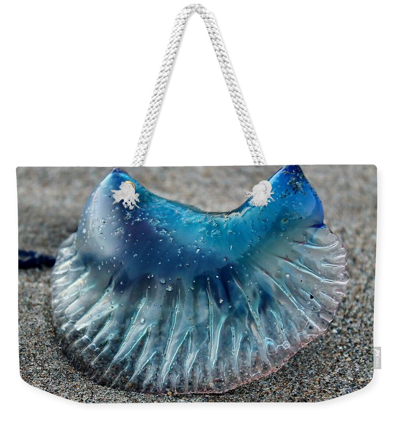 Man-o-war Weekender Tote Bag featuring the photograph Man O War by Catie Canetti
