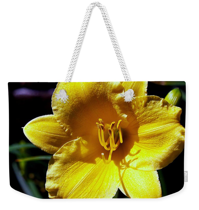 Flower Photography Weekender Tote Bag featuring the photograph Many Happy Returns by Patricia Griffin Brett