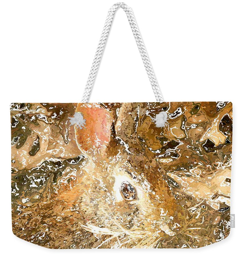 Frank Weekender Tote Bag featuring the digital art March 025 0 Rabbit Eyes Looking by Frank Crescenti