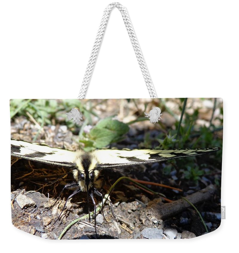Swallow Tail Weekender Tote Bag featuring the photograph Mariposa Up Close by Jannice Walker