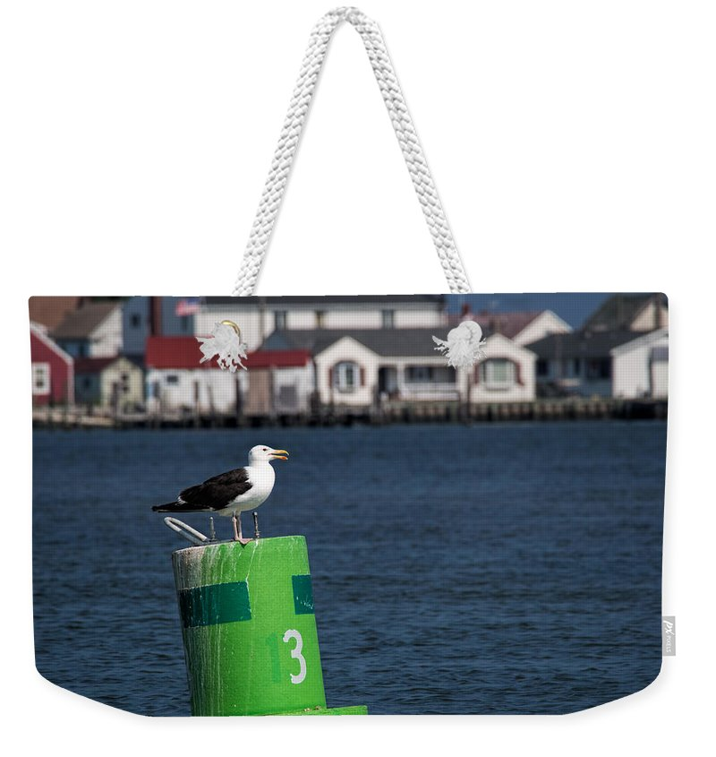 Bird Weekender Tote Bag featuring the photograph Marking The Channel by David Kay