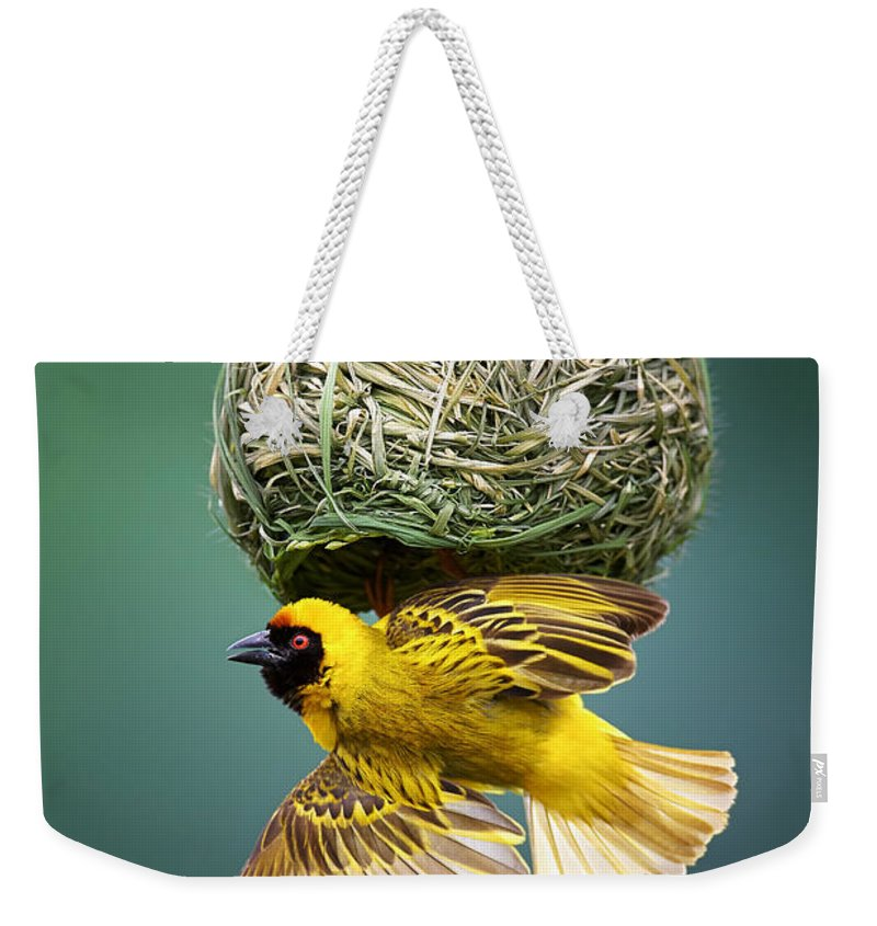 Africa Weekender Tote Bag featuring the photograph Masked Weaver At Nest by Johan Swanepoel