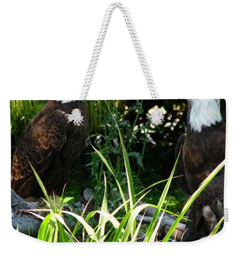 Patzer Weekender Tote Bag featuring the photograph Mates by Greg Patzer