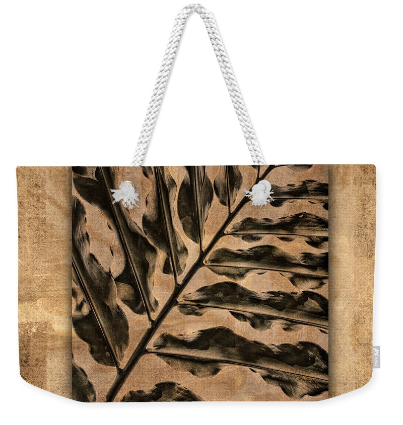 Maui Weekender Tote Bag featuring the photograph Maui Tropic Brown by Carol Leigh