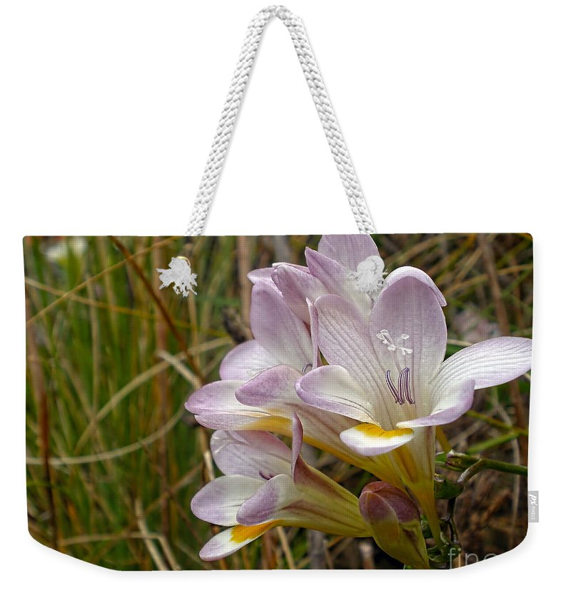 Photography Weekender Tote Bag featuring the photograph Mauve Freesia In The Wild by Kaye Menner