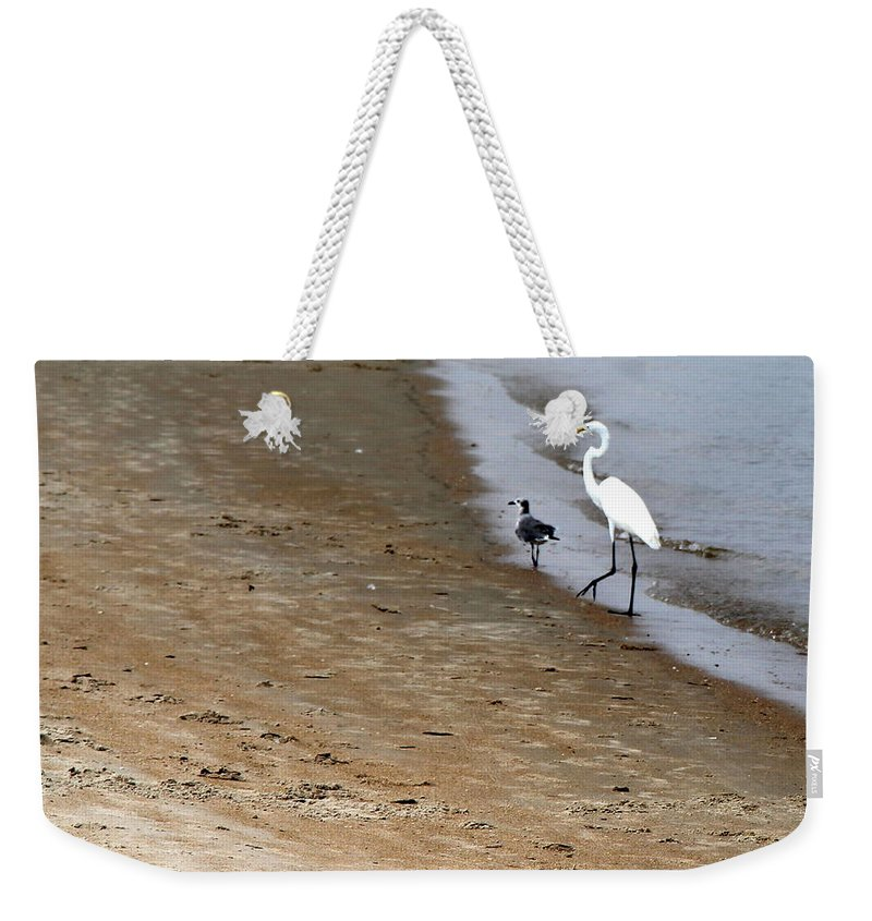 North Carolina Weekender Tote Bag featuring the photograph Me And My Buddy by Rand Wall