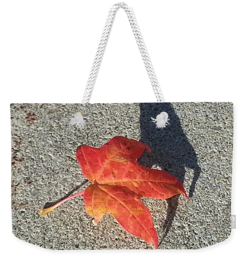 Red Leaf Weekender Tote Bag featuring the photograph Me And My Shadow by Caryl J Bohn