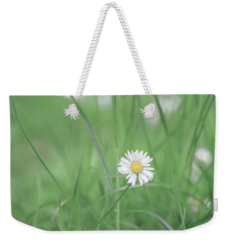 Flower Weekender Tote Bag featuring the photograph Meadows Of Heaven by Evelina Kremsdorf