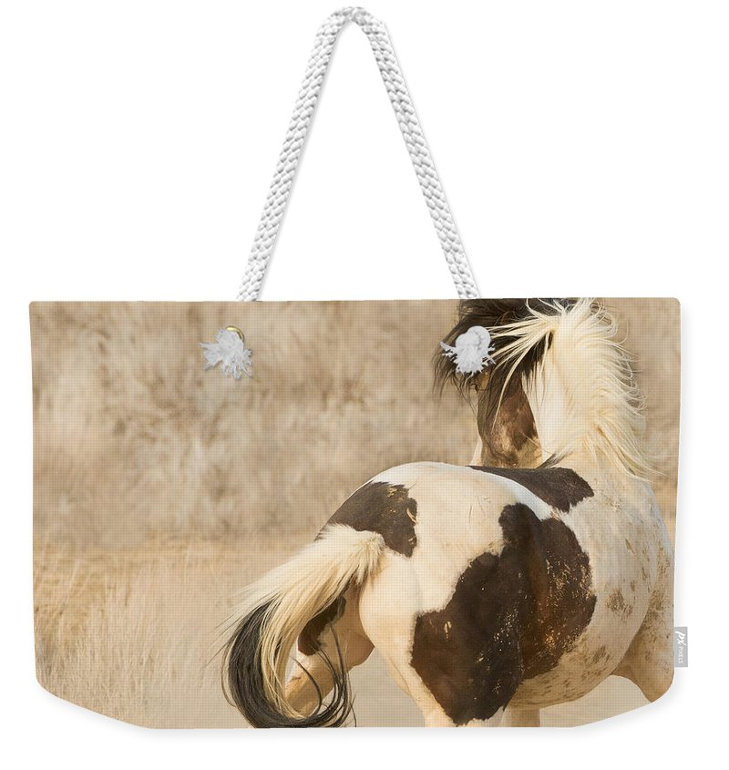 Horse Weekender Tote Bag featuring the photograph Medicine Hat Turns by Carol Walker