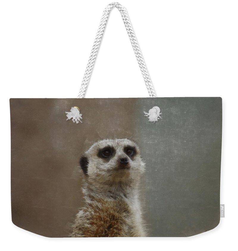 Meerkat Weekender Tote Bag featuring the digital art Meerkat 5 by Ernie Echols