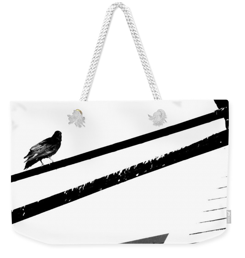 Birds Weekender Tote Bag featuring the photograph Meeting On Line by The Artist Project