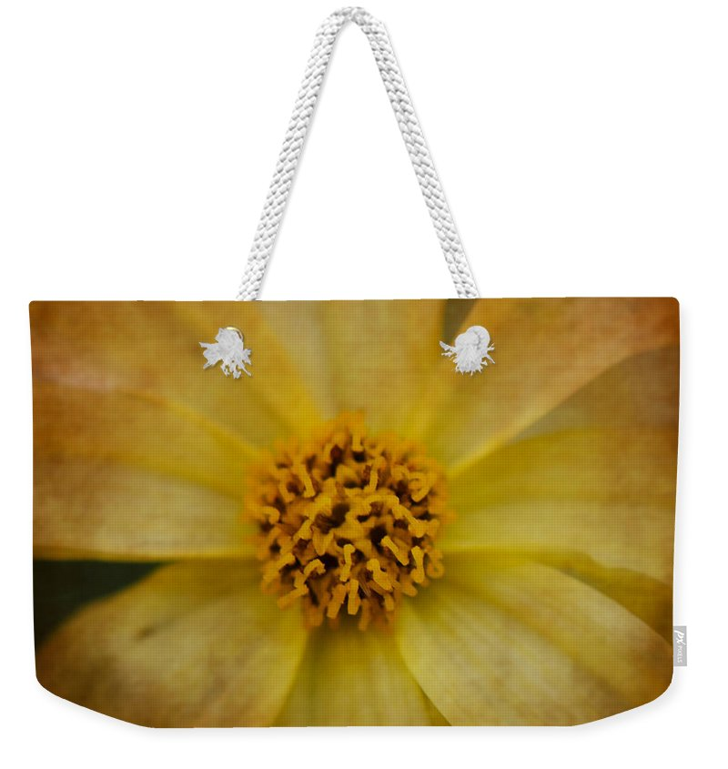 Yellow Weekender Tote Bag featuring the photograph Mellow Yellow 2 by Judy Wolinsky