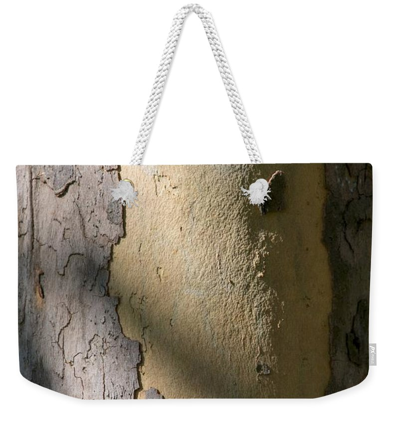 Tree Weekender Tote Bag featuring the photograph Meridian by Joseph Yarbrough