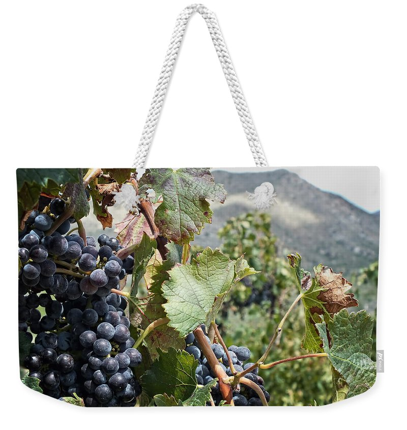 Wine Weekender Tote Bag featuring the photograph Merlot Ready by Lucinda Walter