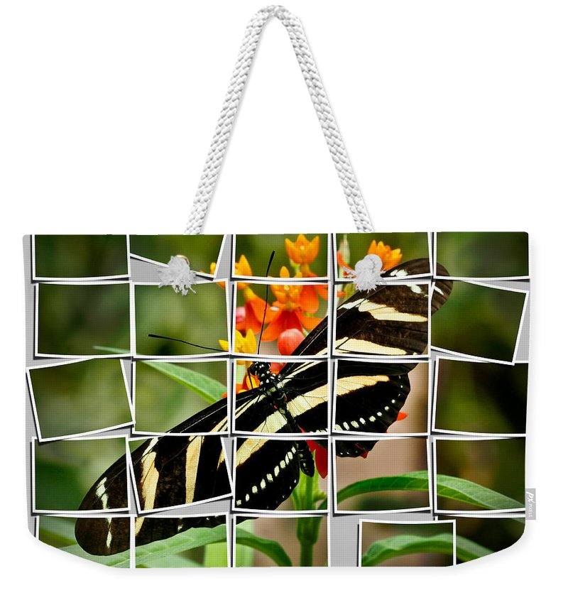 Animals Weekender Tote Bag featuring the photograph Messed Up Butterfly by Jean Noren