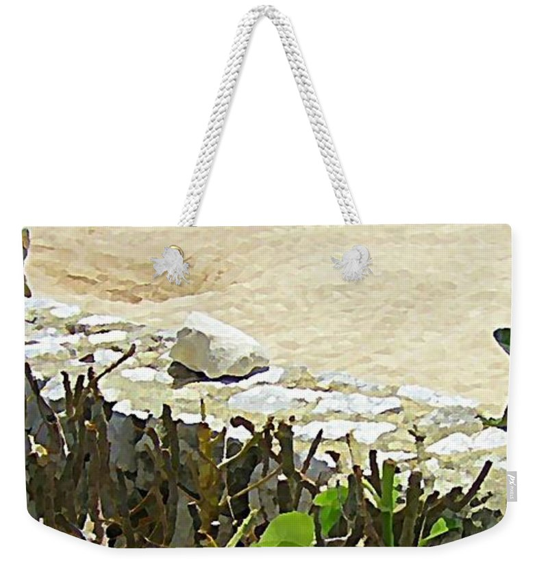 Lizards Weekender Tote Bag featuring the painting Mexican Stand Off by John Malone