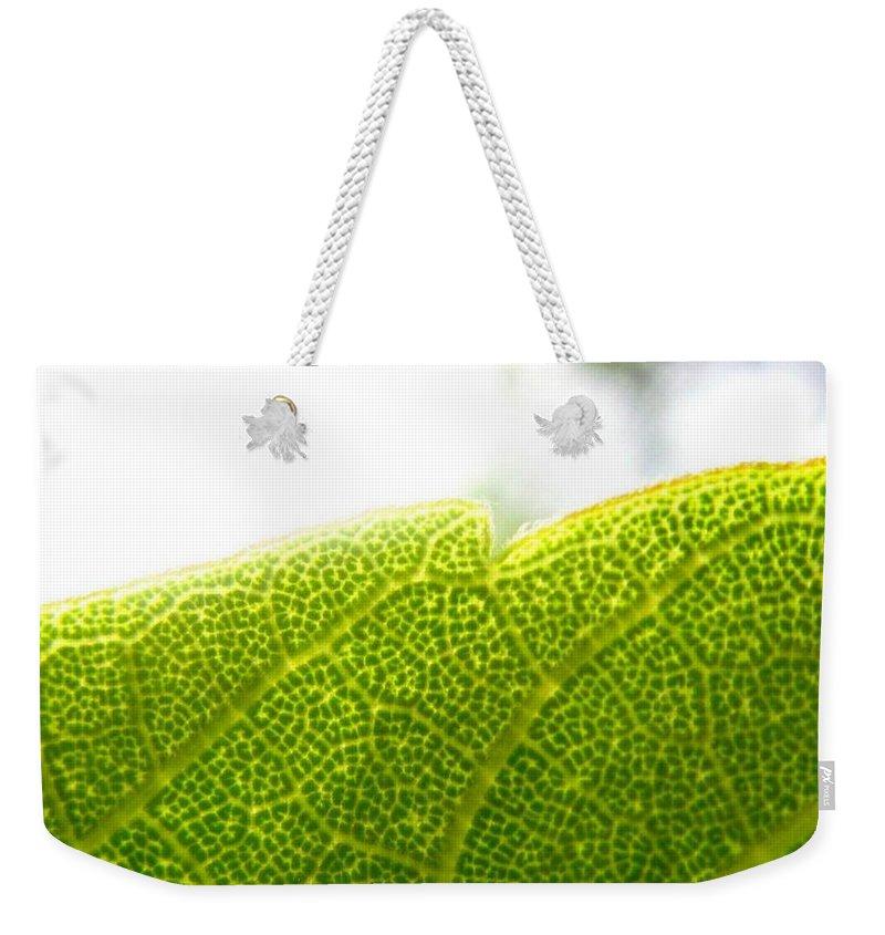 Leaf Weekender Tote Bag featuring the photograph Micro Leaf by Rhonda Barrett
