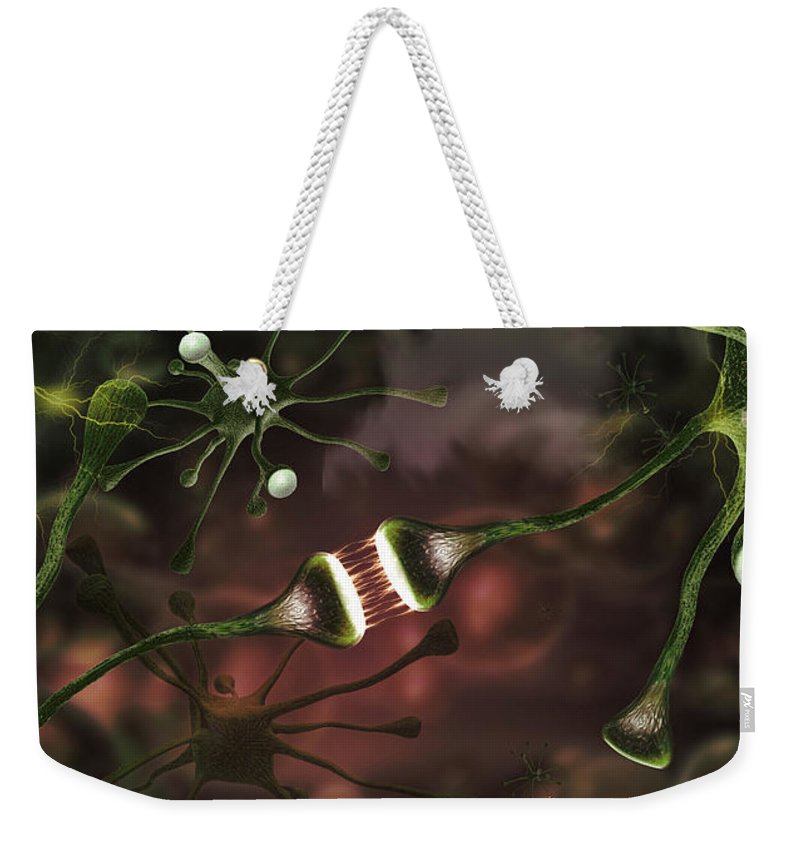 Photography Weekender Tote Bag featuring the photograph Microscopic Image Of Brain Neurons by Panoramic Images