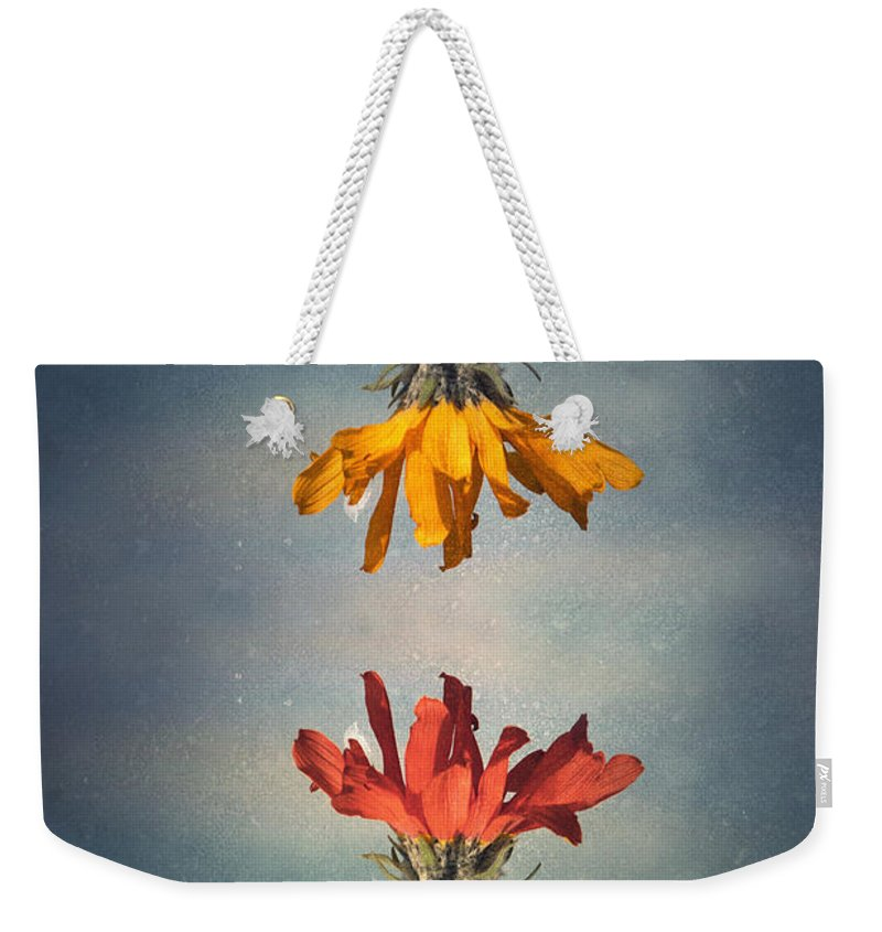 Middle Ground Weekender Tote Bag featuring the photograph Middle Ground by Tara Turner