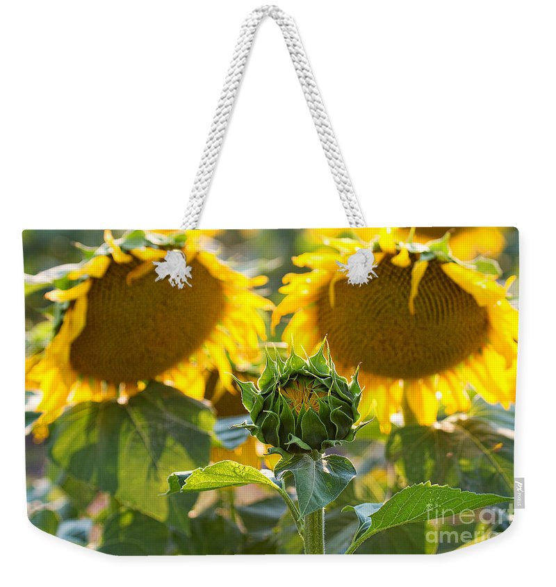 Flowers Weekender Tote Bag featuring the photograph Midwives by Jim Garrison
