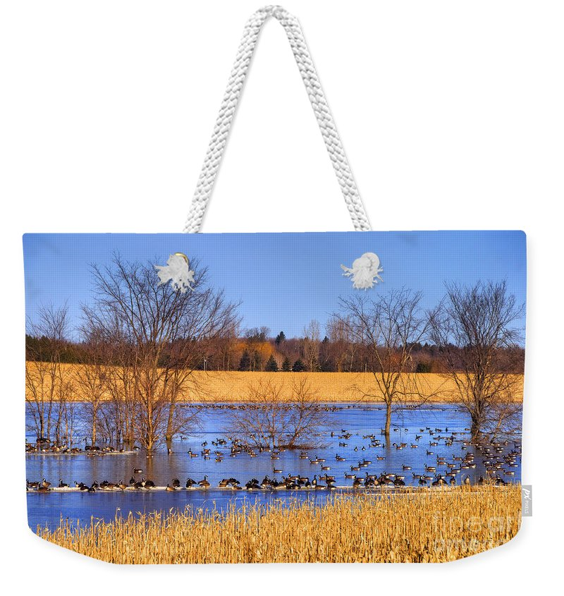 Festblues Weekender Tote Bag featuring the photograph Migration.. by Nina Stavlund