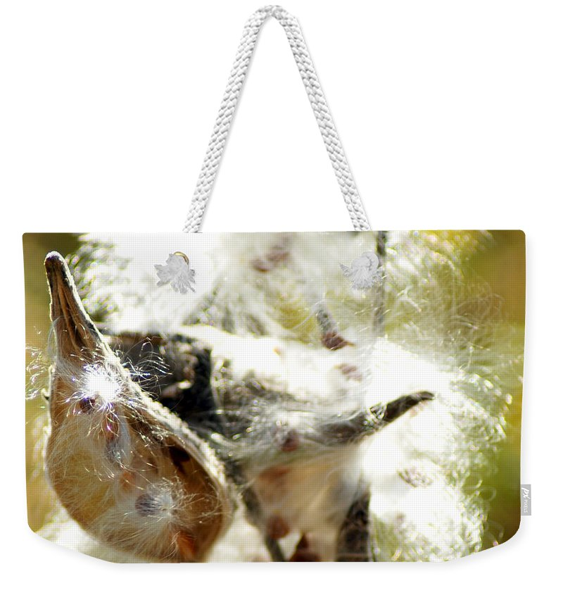 Common Milkweed Plant Weekender Tote Bag featuring the photograph Milkweed Blowout by Optical Playground By MP Ray