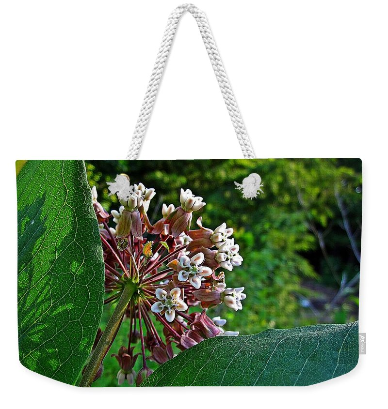 Milkweed Weekender Tote Bag featuring the photograph Milkweed Flowers And Leaves by MTBobbins Photography