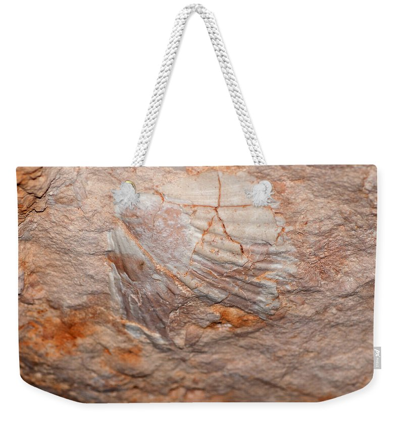 Rock Weekender Tote Bag featuring the photograph million years ago 2 - An enormeous shell fossile in top of cova des coloms in Es Migjorn - Menorca by Pedro Cardona Llambias