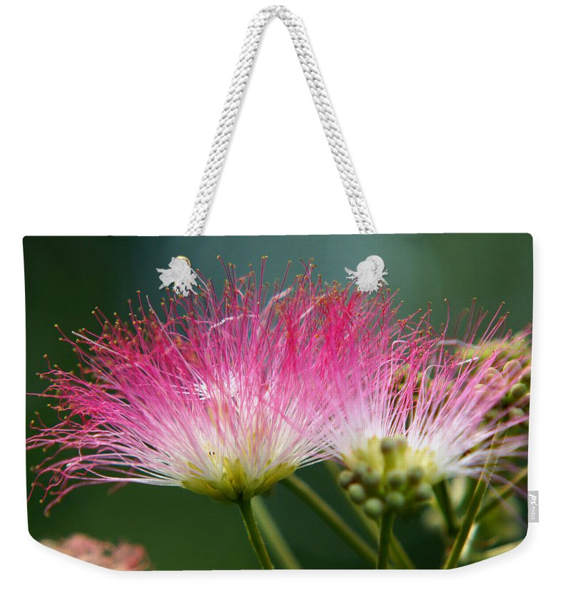 The Mimosa Weekender Tote Bag featuring the photograph Mimosa by Kim Pate