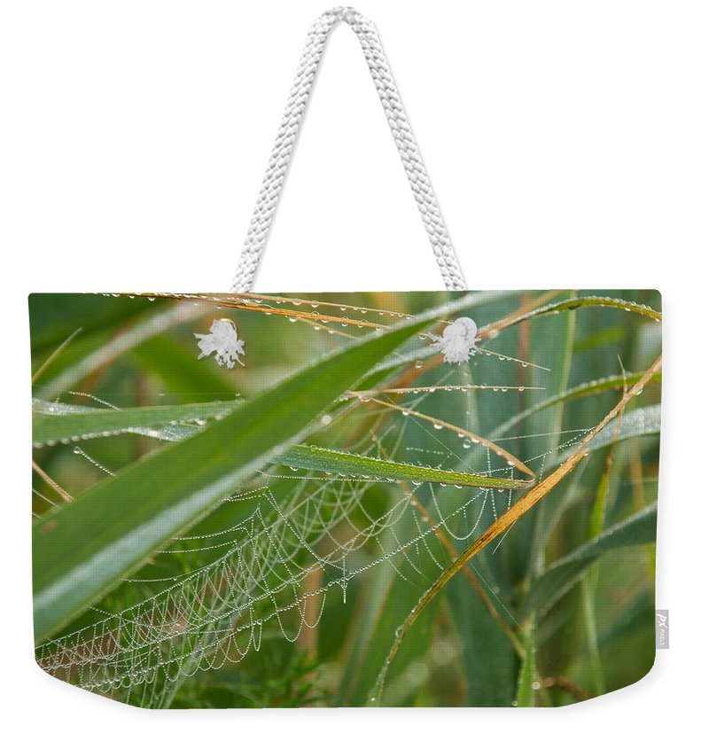 Dewdrops Weekender Tote Bag featuring the photograph Miniature Pearl Strings by Georgia Mizuleva