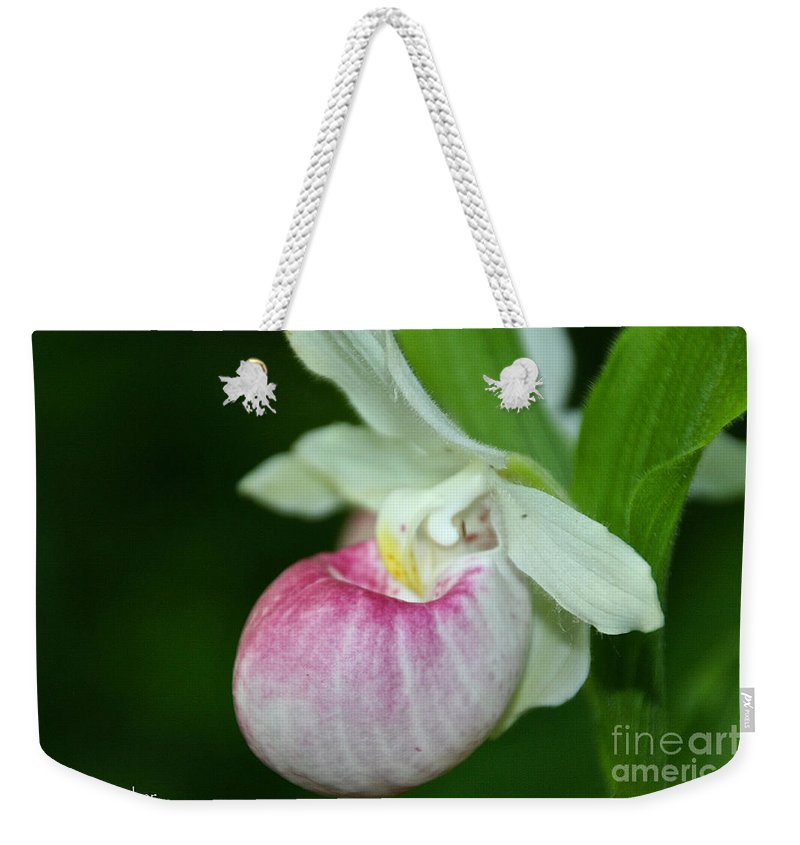 Flower Weekender Tote Bag featuring the photograph Minnesota's Lady Slipper by Susan Herber