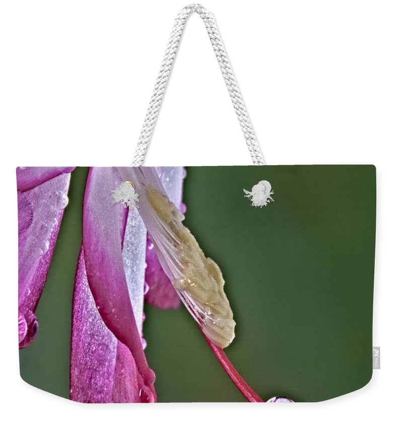 Delicate Weekender Tote Bag featuring the photograph Mirror Reflection by Susan Candelario