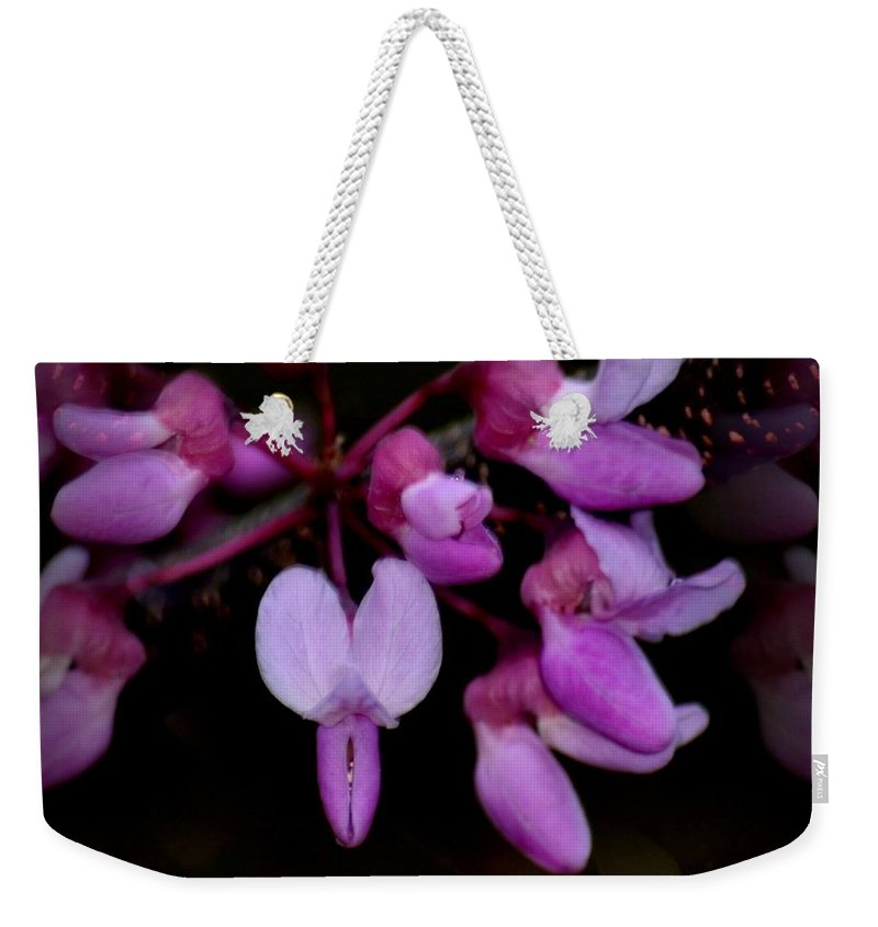 Mirrored Redbuds Weekender Tote Bag featuring the photograph Mirrored Redbuds by Maria Urso