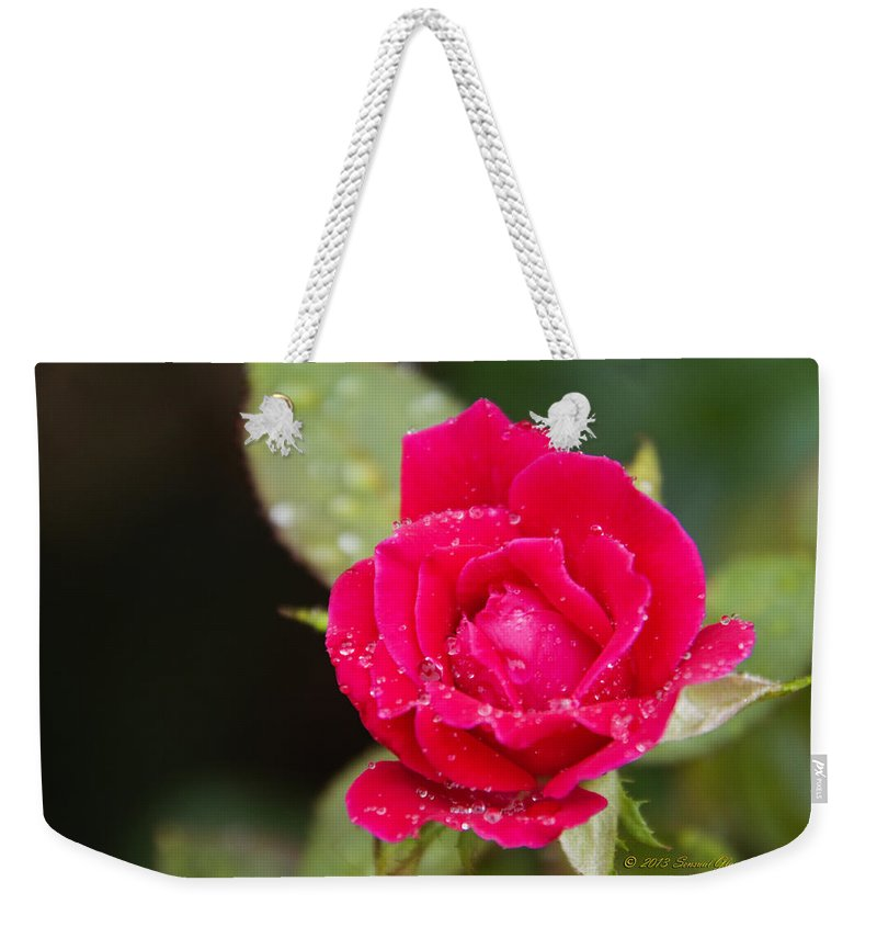 Red Rose Weekender Tote Bag featuring the photograph Miss Misty Of Love 1 by Walter Herrit