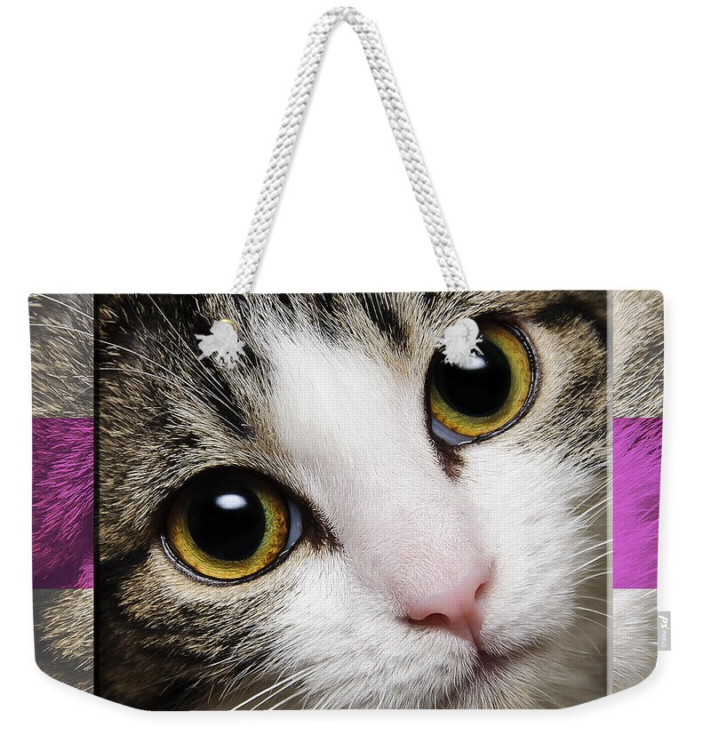 Abstract Weekender Tote Bag featuring the photograph Miss Tilly The Gift 1 by Andee Design