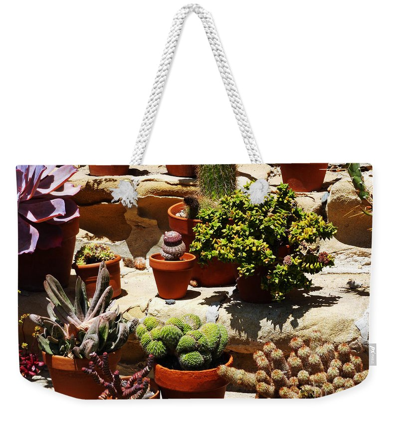Mission Cactus Garden Weekender Tote Bag featuring the photograph Mission Cactus Garden by Methune Hively