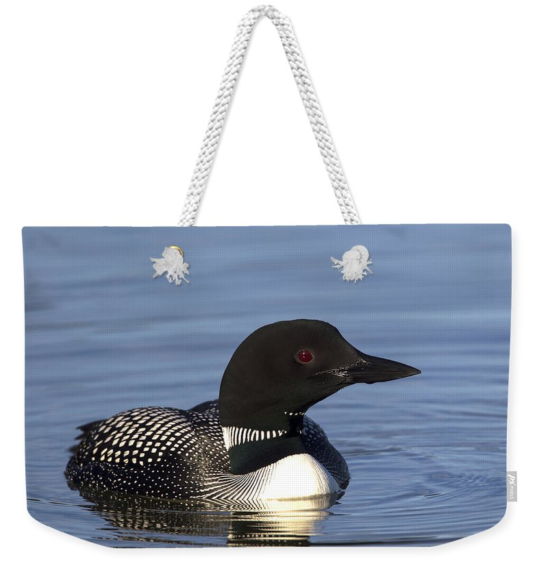 Doug Lloyd Weekender Tote Bag featuring the photograph Mister Red Eye by Doug Lloyd