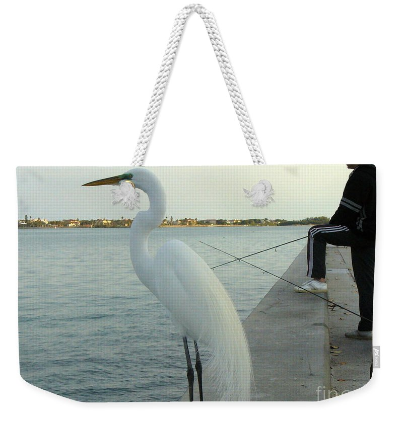 Bird Weekender Tote Bag featuring the photograph Mister When Are We Going To Have Catch Of The Day by Lingfai Leung