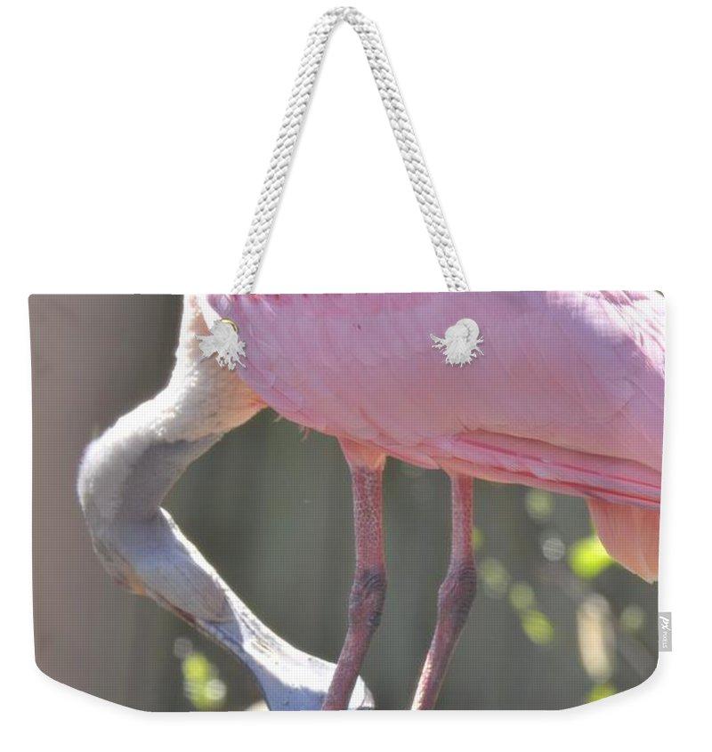 Misty Morning Spoonbill Weekender Tote Bag featuring the photograph Misty Morning Spoonbill by Maria Urso