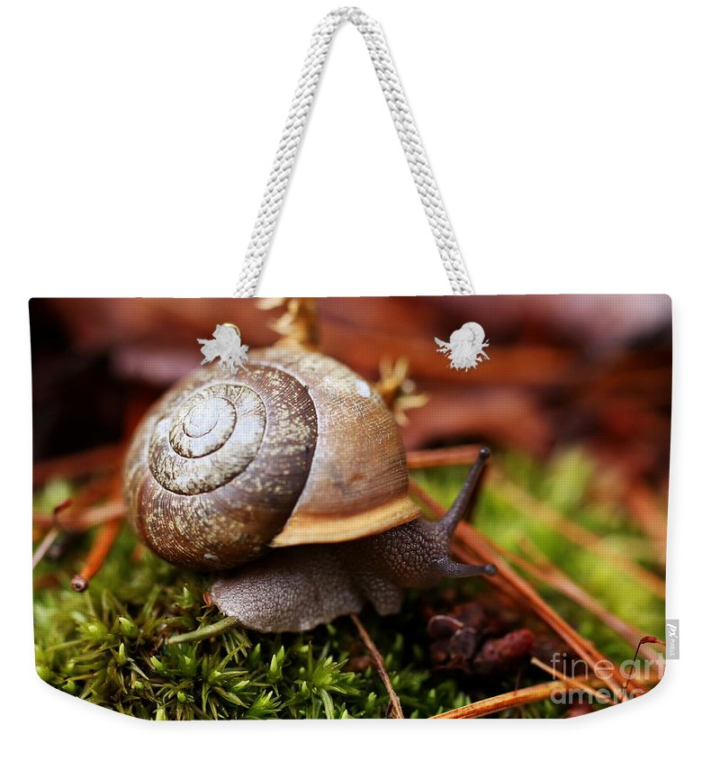 Snail Weekender Tote Bag featuring the photograph Mobile Home by David Rucker