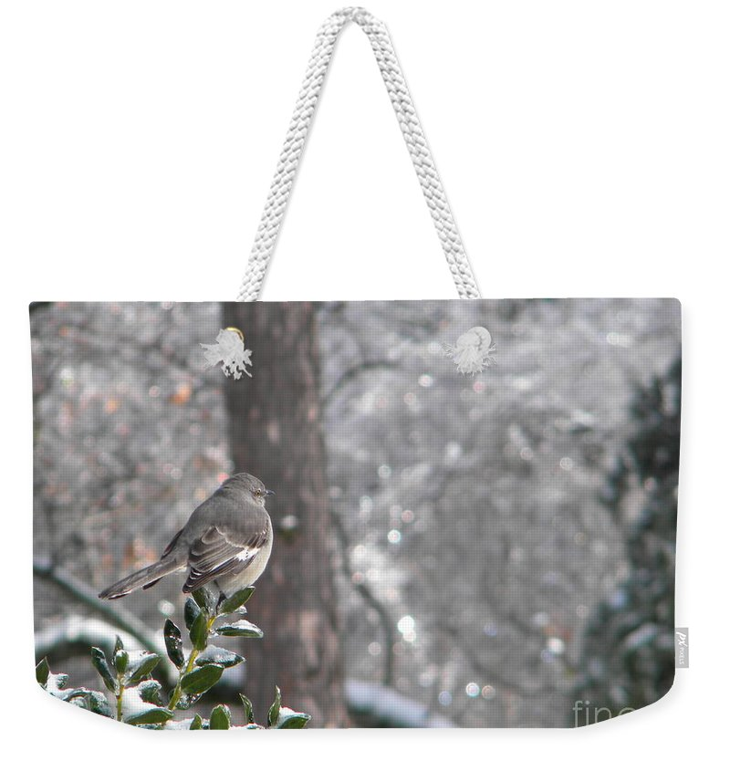 Mockingbird Weekender Tote Bag featuring the photograph Mockingbird Back by Nathanael Smith