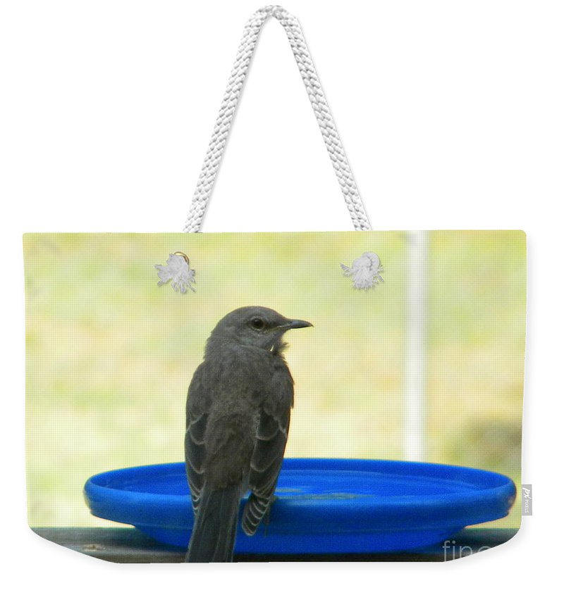 Mockingbird Weekender Tote Bag featuring the photograph Mockingbird Frisbee by Nathanael Smith