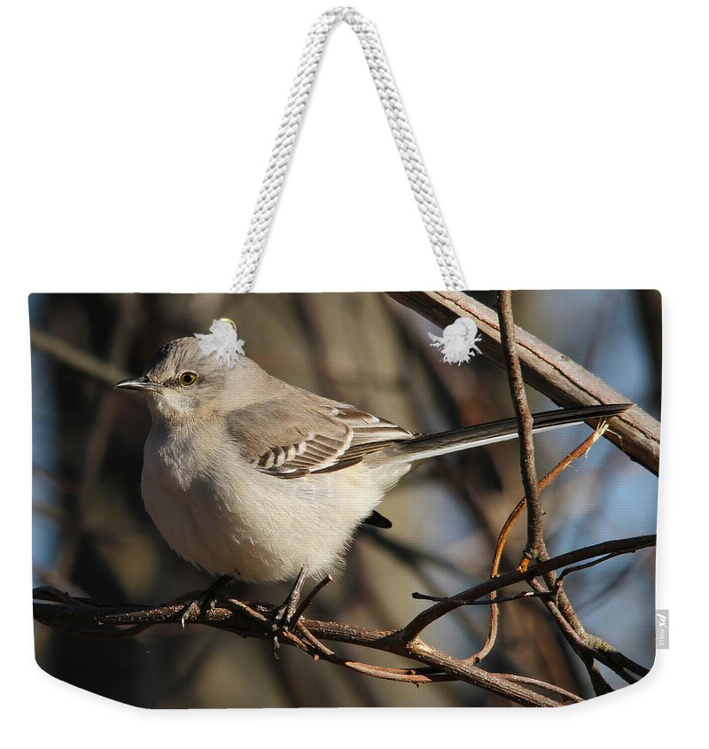 Bird Weekender Tote Bag featuring the photograph Mockingbird by Roger Becker