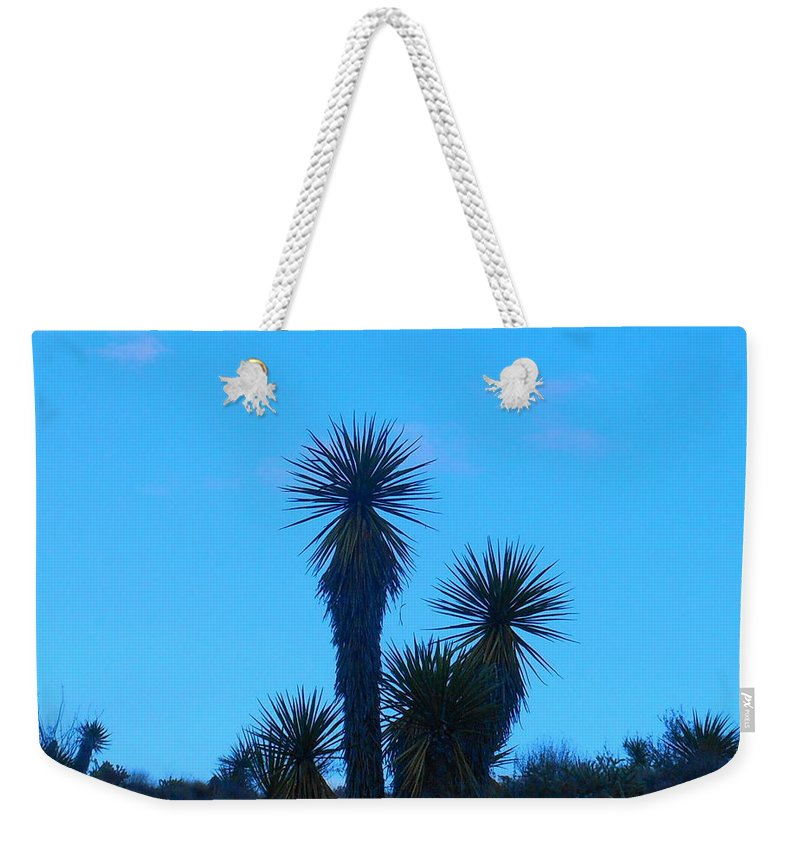 Landscape Weekender Tote Bag featuring the photograph Mohave Blue by James Welch