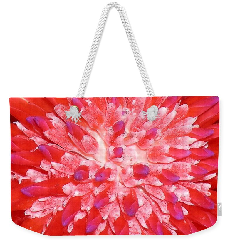 Hawaii Iphone Cases Weekender Tote Bag featuring the photograph Molokai Bromeliad by James Temple